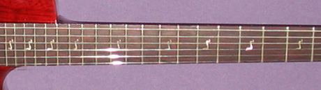 Cobra Model 2 Guitar Fretboard