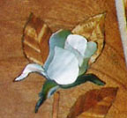 Wood and Shell Rose Inlay